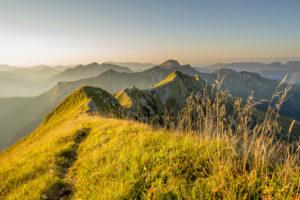 Der Grat zwischen Sonntagsspitze und Schreckenspitze im Karwendel, in den tiroler Alpen am Achensee im warmen Morgenlicht eines Spätsommertages mit hohem Gras bzw. Bergwiese.