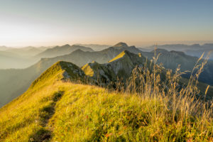 The ridge between the Sonntagsspitze and Schreckenspitze in the Karwendel, in the Tyrolean Alps on the Achensee in the warm morning light of a late summer's day with tall grass or mountain meadow.