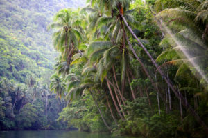 Loboc River, Bohol, Central Visayas, Philippines