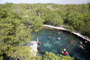 Mangrove swamp on Holbox Island, Tourists bathing in crystal clear waters, Quintana Roo, Yucatán Peninsula, Mexico