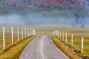 Cansiglio plateau, foggy morning on the plateau in autumn, Alpago, Belluno, Veneto, Italy