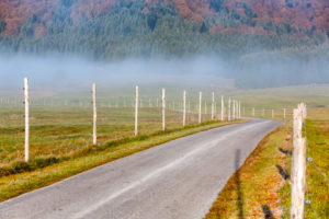 Cansiglio plateau, foggy morning on the plateau in autumn, Alpago, Belluno, Veneto, Italy