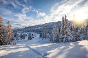 Ski area of Cherz Pralongia, La Viza hut, Cherz, Livinallongo del Col di Lana, Belluno, Veneto, Italy