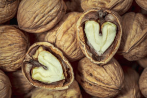 walnuts ready to eat, inside the heart-shaped kernel