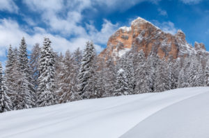 winter landscape at the foot of the tofana di rozes, Cortina d'Ampezzo, Belluno, Veneto, Italy