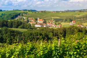 the small village of Miklavz pri Ormozu in the wine growing region of Jeruzalem, Municipality of Ormoz, Slovenian Styria, Slovenia