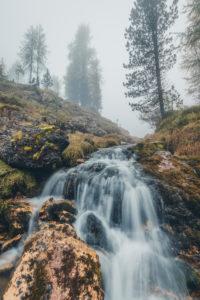 stream among the trees in a gloomy morning, natural alpine landscape, dolomiti d'ampezzo natural park, belluno, veneto, italy