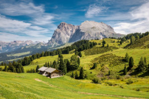 traditional mountain huts in the pastures of the alpe di siusi, with the Sassopiatto / Plattkofel in the background, province of bolzano, South Tyrol / Südtirol, Italy, Europe