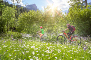 Italy, Veneto, Belluno, Agordino, smiling mom and daughter ride their bikes through the flowering meadows