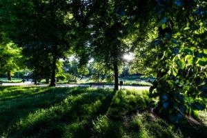 Europe, Poland, Lower Silesia, Wroclaw - Park Stanislawa Tolpy