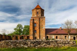 Europe, Poland, Silesian Voivodeship, Toszek / Tost - Toszek Castle