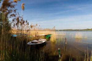 Europe, Poland, Silesian Voivodeship, Pogoria lakes - Dabrowa Gornicza