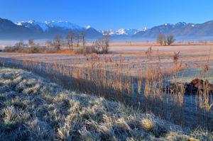 Moorgebiet Murnauer Moos im Vorfrühling gegen Estergebirge 2086m und Wettersteingebirge mit Zugspitze 2962m, Murnau, Blaues Land, Oberbayern, Bayern, Deutschland