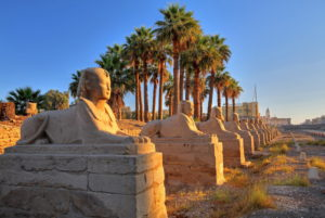 Alley of sphinxes at the temple of Luxor, Luxor, Upper Egypt, Egypt