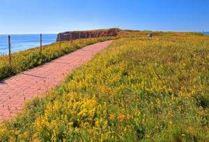 Circular path on the cliff edge of the western cliffs, Heligoland, Heligoland Bay, German Bight, North Sea Island, North Sea, Schleswig-Holstein, Germany