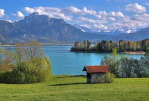 Spring landscape at Forggensee against Säuling (2047m) of the Ammergau Alps, Halblech, Romantic Road, Ostallgäu, Allgäu, Swabia, Bavaria, Germany