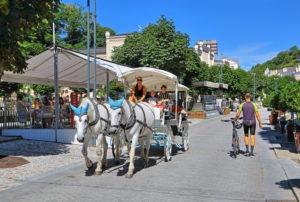 Horse-drawn carriage, fiaker in the spa area, Karlsbad, spa triangle, Bohemia, Czech Republic