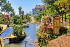 Tropischer Park Monte Palace mit Teich und Baumfarnen im Ortsteil Monte oberhalb der Stadt, Funchal, Insel Madeira, Portugal