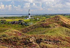 Dune landscape with lighthouse against the Wadden Sea, Kampen, North Sea island, Sylt, North Frisian Islands, North Frisia, Schleswig-Holstein, Germany