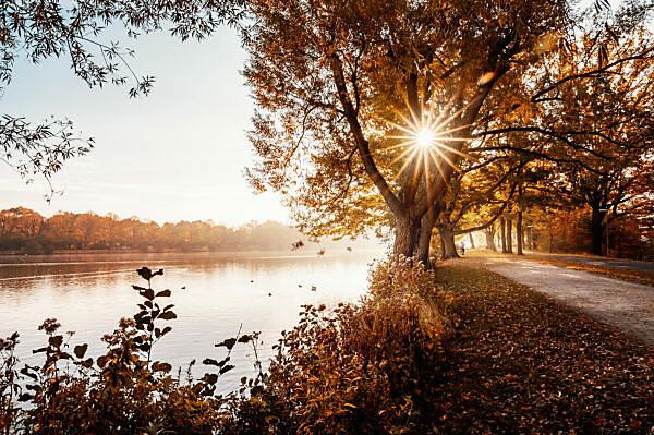 Herbst am Maschsee in Hannover, Niedersachsen, Deutschland