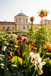 Spring in the mountain garden in Hanover, Lower Saxony, Germany
