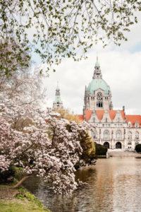 Frühling am Neuen Rathaus in Hannover, Niedersachsen, Deutschland