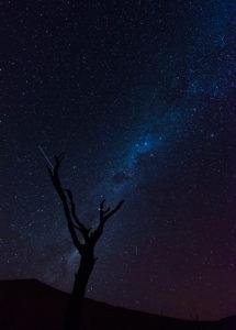Deadvlei in  Namibia: Milchstraße, im Vordergrund ein abgestorbener Kameldornbaum. Langzeitbelichtung