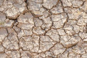 A jeep tour through Namibia: dry ground, signs of drought