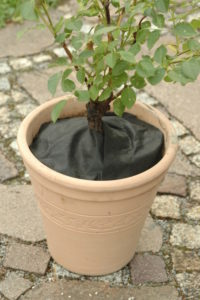 step by step instructions, plant tub free of weeds
