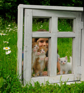 Girls with kittens behind old white window on a meadow