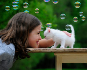 Girls with white kitten on old wooden table, bubbles, green background, blurred