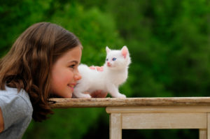 Girls with white kitten on old wooden table, green background, blurred