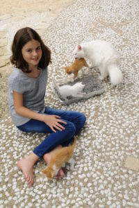 Girl in jeans and T-shirt sits on terrace beside white longhair cat, three kittens and cat toilet