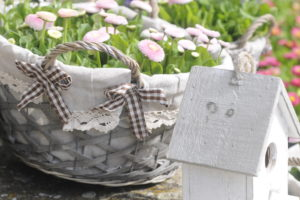 White nesting box and daisy in the basket, Bellis perennis