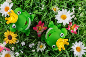 Frog prince, two on artificial spring meadow, figure, green, from above,