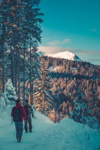 Snow-covered trail near Mittenwald, Werdenfelser Land, district Garmisch-Partenkirchen, Bavaria, Germany