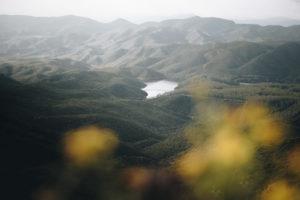 Hügellandschaft mit unscharfen Blüten im Vordergrund und einem Stausee in der Mitte in einem Nationalpark auf der Insel Sardinien, Italien