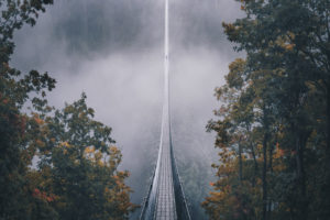 The suspension rope bridge Geierlay in the morning with fog in the Hunsrück. One person is at the end of the bridge
