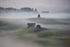 Sunrise over the Seiser Alm / Alpe di Siusi in the Dolomites, South Tyrol, Italy. Fog obscures the individual forest sections and alpine huts