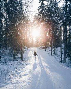 Fotograf läuft in Richtung Sonne im verschneiten Wald von Turku, Finnland / Uittamo