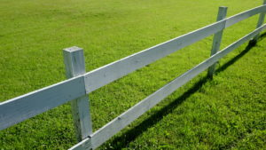 Wooden fence in Bearsville, NY