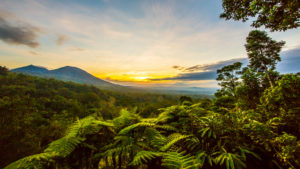 Jatiluwih, Blick vom Sang Giri - Mountain Tent Resort auf den Regenwald