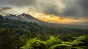 Jatiluwih, view from Sang Giri - Mountain Tent Resort to the rainforest