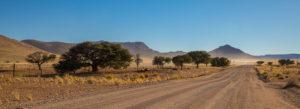 Sandstrasse in der Steppe Namibias