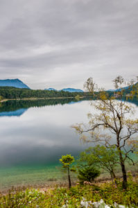 Eibsee vom Westufer, trübes Wetter über einer Sehenswürdigkeit im Werdenfelser Land, ein intensives Grün dominiert den Gebirgssee,
