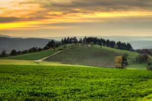 Evening mood in the Rhein-Taunus nature park near Presberg, view over meadows and fields with a tree wreath on the hilltop, behind it the dreamlike Wispertal, HDR picture,