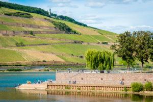 Rhein-Nahe-Eck mit Ruine Ehrenfels und dem Mäuseturm