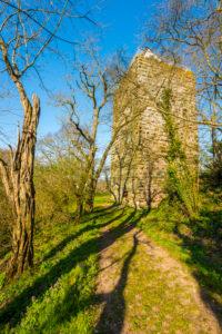 Wohnturm von Burg Sponheim, im Soonwald (Hunsrück), liegt auf einem Bergkamm, aussen mit Buckelquadern, gegründet von Grafen von Sponheim, Hildegard von Bingen, Jutta von Sponheim, Spornburg,