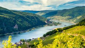 Rhein bei Assmannshausen, links die Burg und weiter hinten die Richenstein