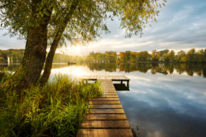Lake, water, Fünfseenland, Lake Weßlinger See, jetty, tree, atmosphere, back light, sunrays, morning,